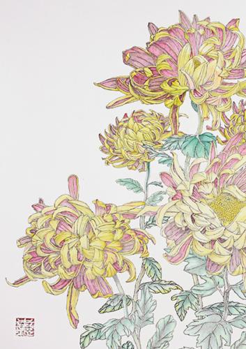 金色の殿様菊