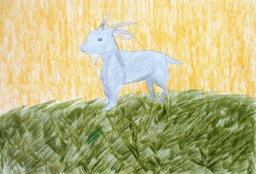 光の中のヤギ