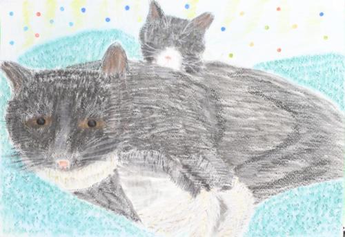 ネコの兄弟