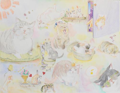 猫のワールド
