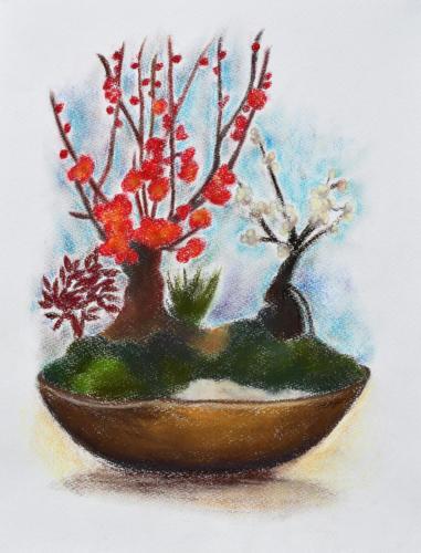 紅白梅図盆栽