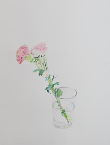 カーネーションと小菊