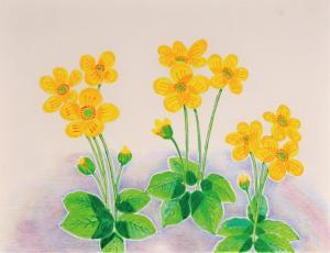 笑う花たち