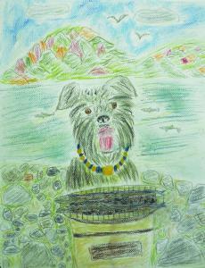愛犬と散歩 秋