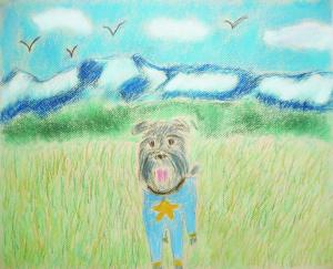 愛犬と散歩 春'17北アルプス編
