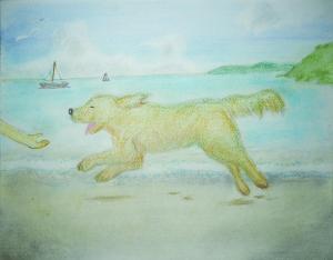 砂浜を走る犬