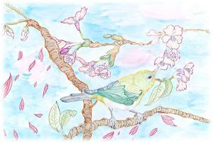 早春の野鳥
