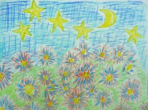 夕方の花畑