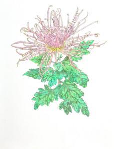 post flower03